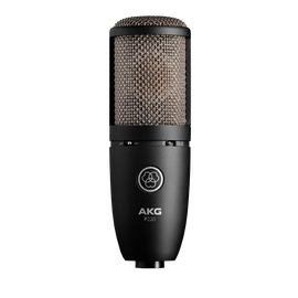 P220 - Black - High-performance large diaphragm true condenser microphone - Hero